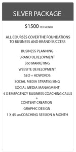 Business Coaching Package - Silver | Social Pirate
