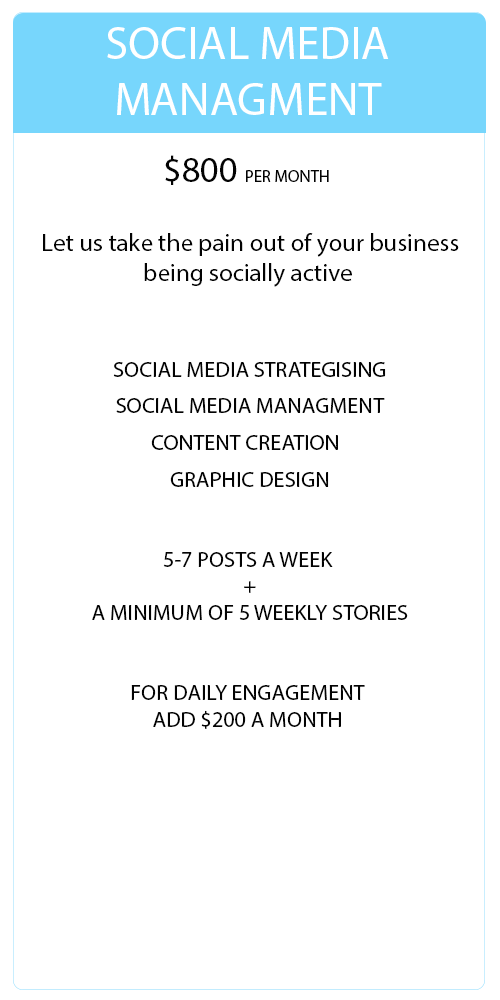 Social Media Management Social Pirate Co