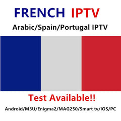 France IPTV Spain Arabic Francais IPTV subscription for m3u Android MAG ENIGMA French channels