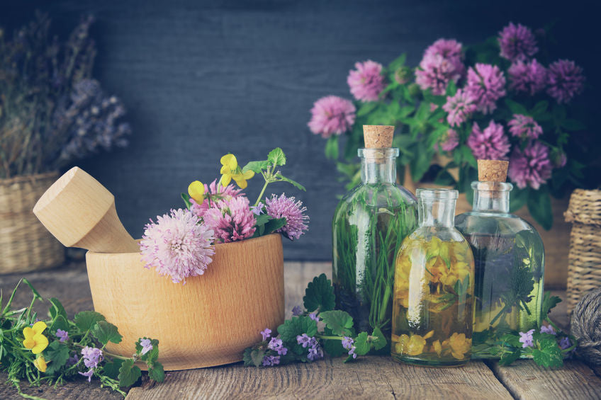 What Are the Most Common Oils for Massage Therapy – read here!
