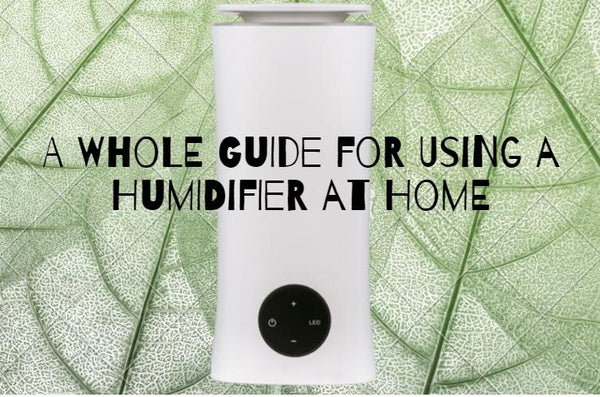 humidifier from lierre.ca