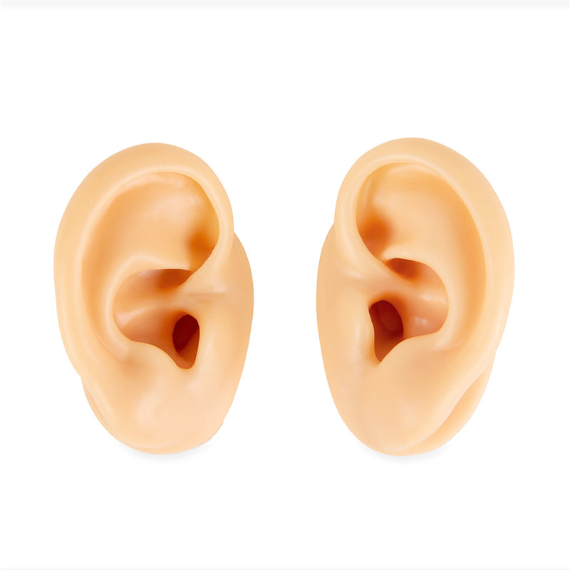 Life-size acupuncture ear model (Pair)