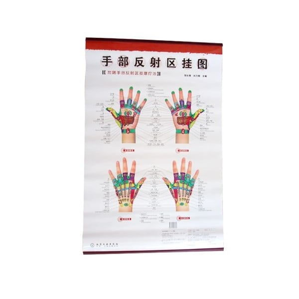 Hand Reflexology Chart (English/Chinese)