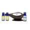 Aladdin Lamp Car Diffuser and Essential Oil Holiday Gift Set