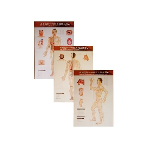 Acupuncture Points Wall Charts