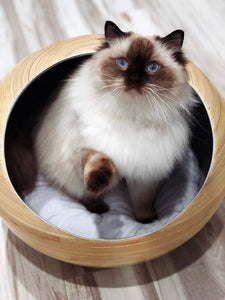 Fhasso Luxury Bamboo Bed for Indoor Cats and Small Dogs - Eco-Friendly, Handmade Cat Cave Bed with Washable Velvet Cushion - Calming Bed for SMALL Dogs and Cats Pod - Modern, Decorative Design