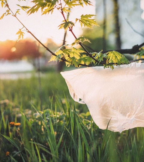 World Environment Day 2020 - A plastic pandemic