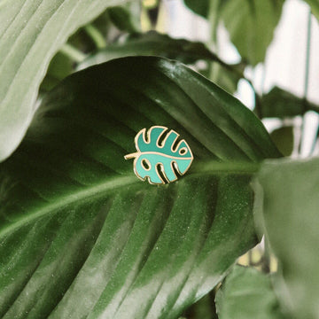 Monstera Leaf pins from These Are Things
