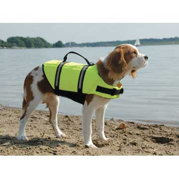 Dog Life Jackets - BoatToys.ca