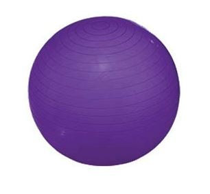 Progression Exercise Ball