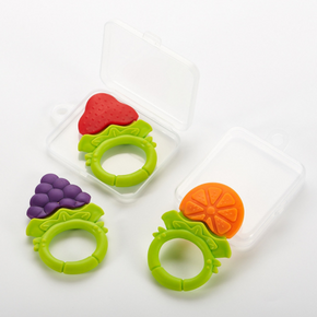 Flat Fruit Teether in Case
