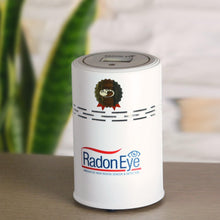 Load image into Gallery viewer, Radon Detector RadonEye for Home Residents