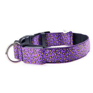 Leopard Spots LED Doggo Collar