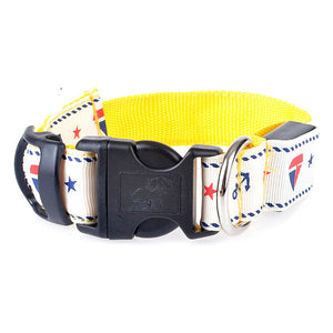 LED Nylon Doggo Collar