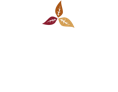 wholesale-bnbtobacco