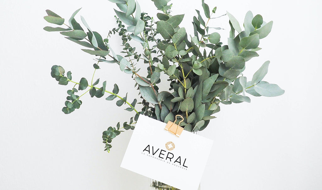Eucalyptus leaves with Averal French Soaps card