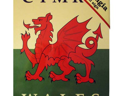 Welsh Dragon Flag Nostalgia Metal Flag