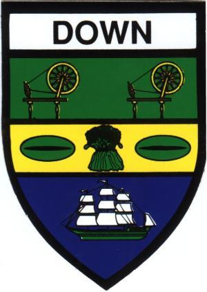 Irish County Car Sticker - Mayo