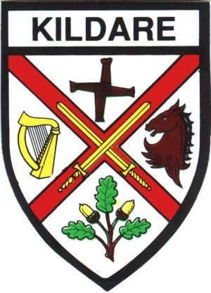 Irish County Car Sticker - Kildare