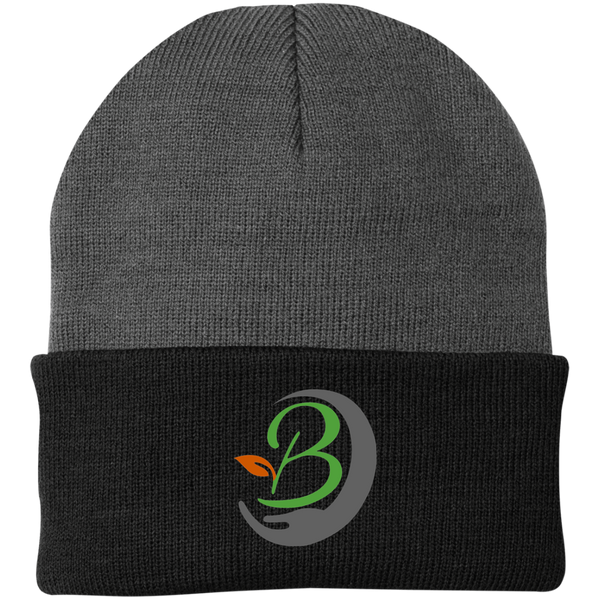 The Brothers Knit Cap
