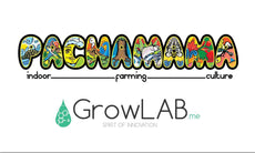 Pachamama Indoor Farming Colombia