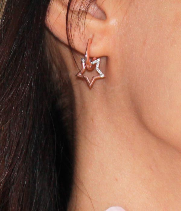 Star Lover Earrings