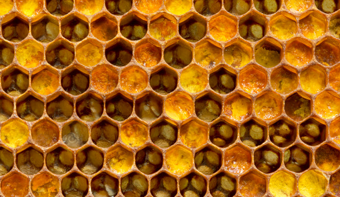 Six things you didn't know about Royal Jelly