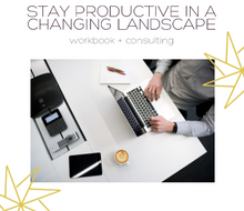 Stay Productive Workbook + Consulting