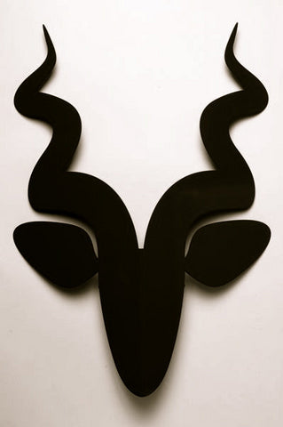 Black Buck Trophy-Curly Horns