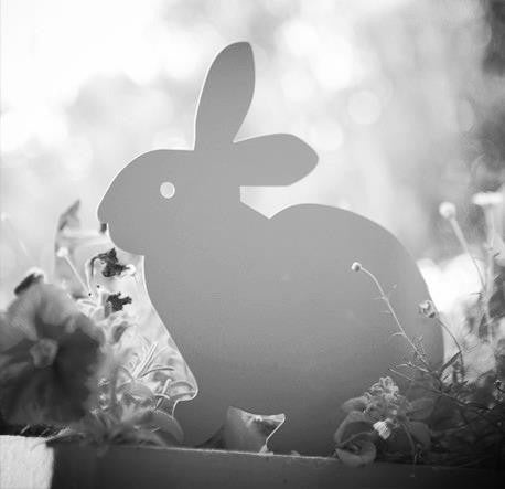 White Bunny Garden Ornament