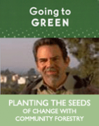 Planting The Seeds of Change with Community Forestry (DVD)