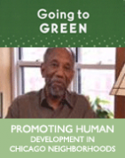 Promoting Human Development in Chicago Neighborhoods (DVD)