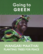 Wangari Maathai: Planting Trees for Peace (DVD)