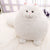1PC Cute Fluffy Cat Plush Toys