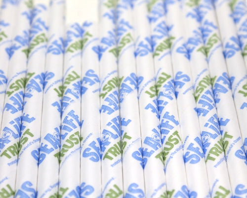 SEA LIFE Trust Paper Straws V2 (6mm x 200mm) - Biodegradable / Eco-Friendly / Food Safe - Intrinsic Paper Straws