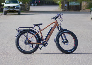 MJM Wheels - Mountain Fat Tire E-Bike (MTF20)