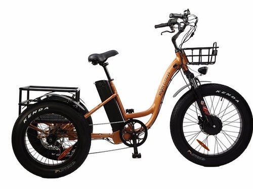 MJM Wheels - Mountain Fat Tire E-Bike Trike (TRF20)