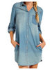 Chambray Wishes Dress