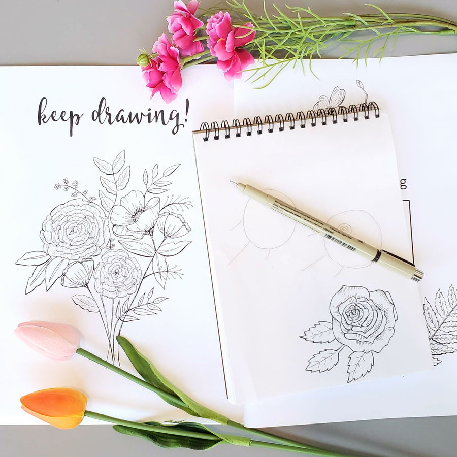 botanical illustration line drawing class