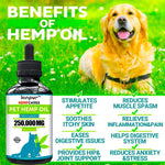 Kinpur (2 PACK | 500,000MG) Hemp Oil for Dogs & Cats