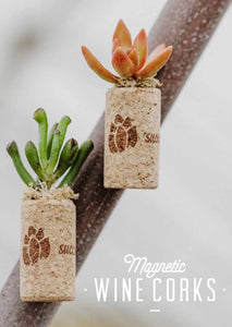 Magnetic Wine Cork Succulent (2 Pack)