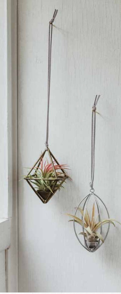 Hanging Tilly Planter