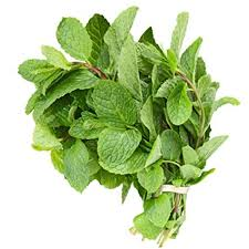 Mint Leaves (per bunch) 120g