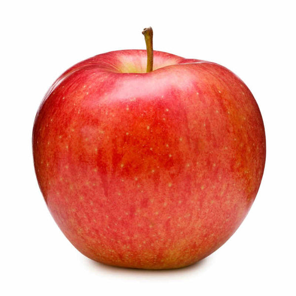 Apple (Red, Pack of 4)