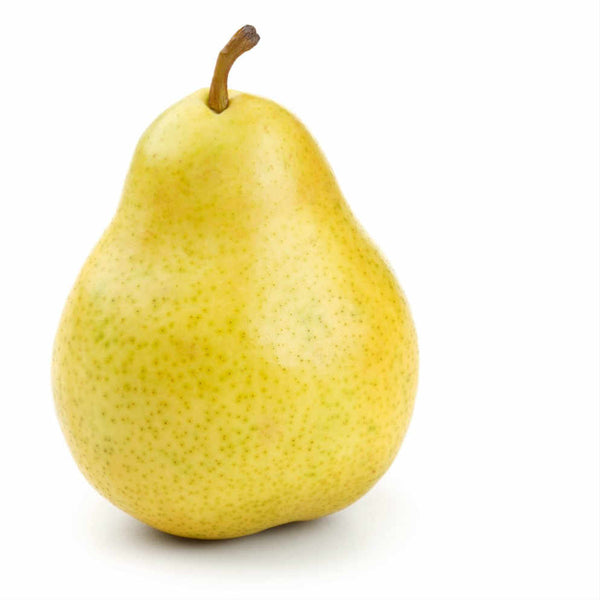 Pear (Pack of 4)