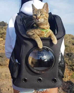 Open image in slideshow, Cat Backpack for Traveling Pets
