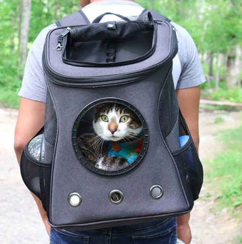 Cat Backpack for Traveling Pets