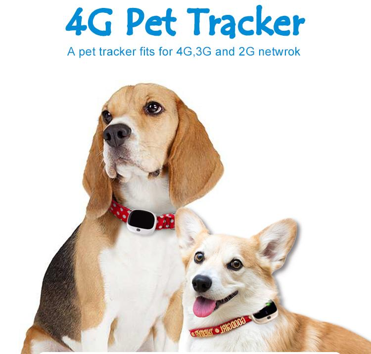4G mini gps tracker Pet Locator