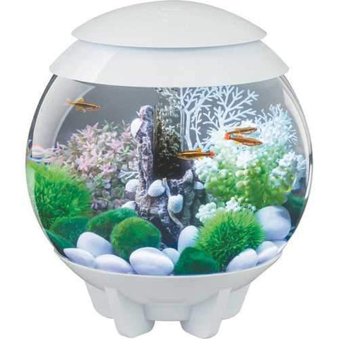 Biorb Halo 15 Mcr Aquarium