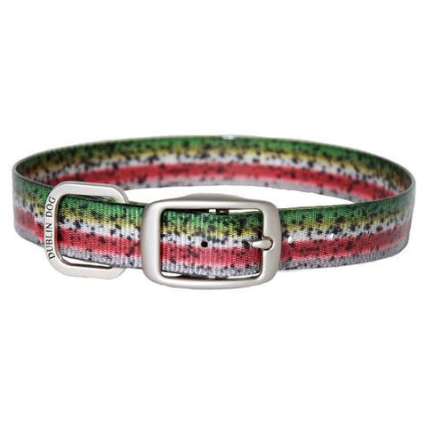 Rainbow Trout Dog Collar by Dublin Dog